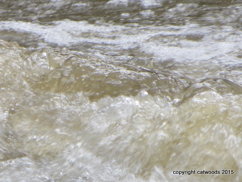 HIgh water close up